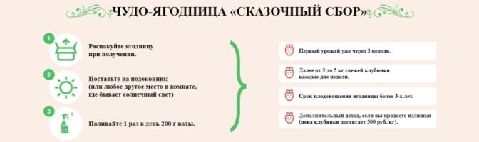 купить чудо ягодницу сказочный сбор в Таганроге